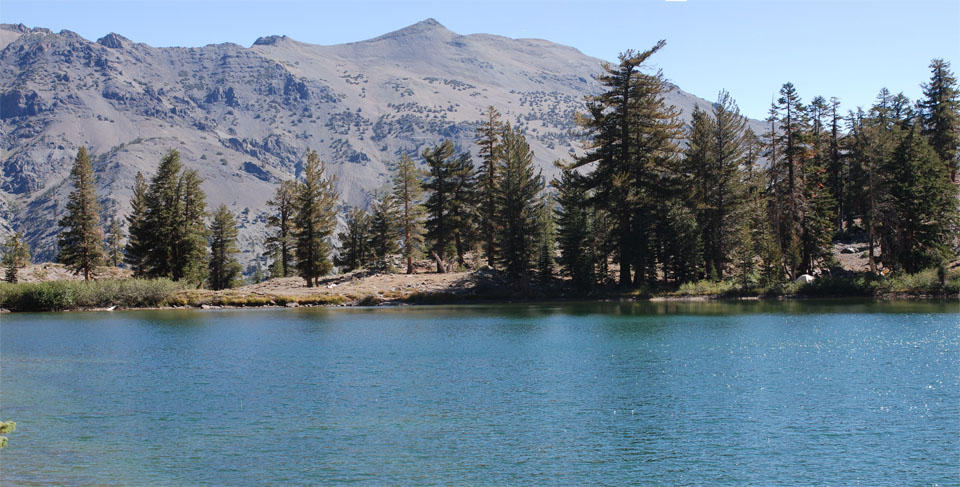 Photo of Sharon Lake, Tuolumne County, CA