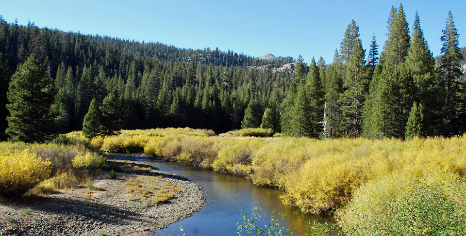 Photo of Middle Fork San Joaquin River, Madera County, CA