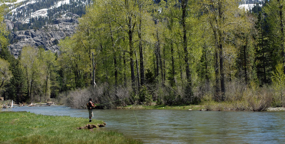 Photo of fisherman on the Stanislaus River, Tuolumne County, CA