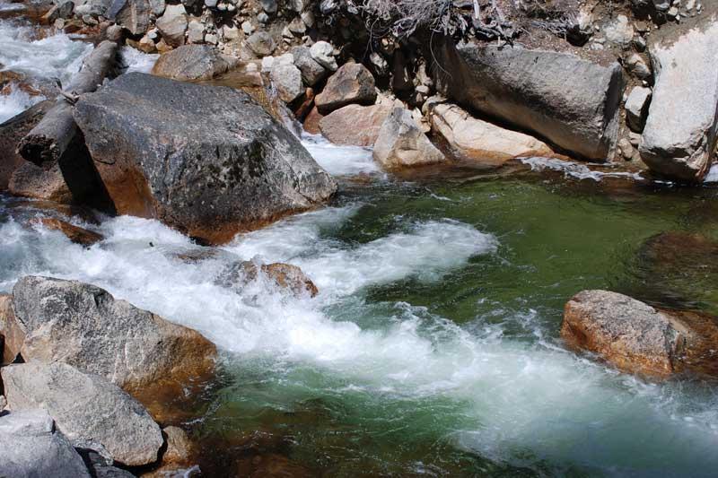 Tenaya creek fishing yosemite dave 39 s sierra fishing for Fishing in yosemite